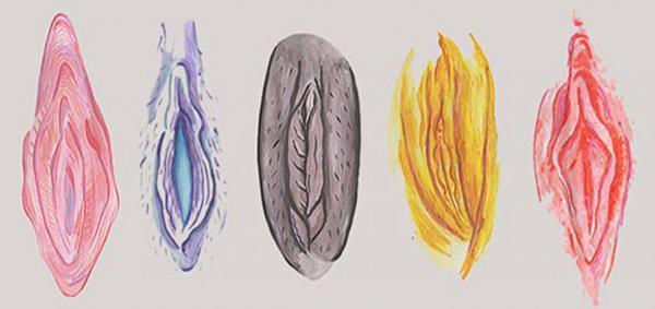 Tipos de vagina: você sabia que existem?